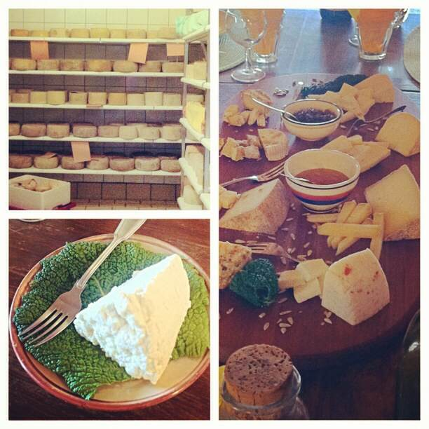 Cheese drying, fresh ricotta and Pecorino Cheese flight- starting from 2 days old to 2 years old. Honey included.