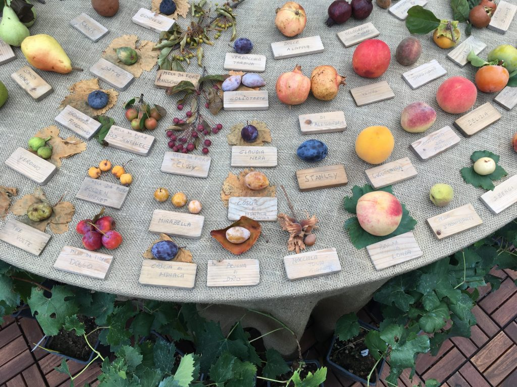 New Farmtotable Openings In Florences SantAmbrogio District - Farm to table near me